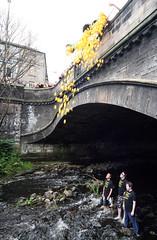 The Stockbridge Duck Race 2010