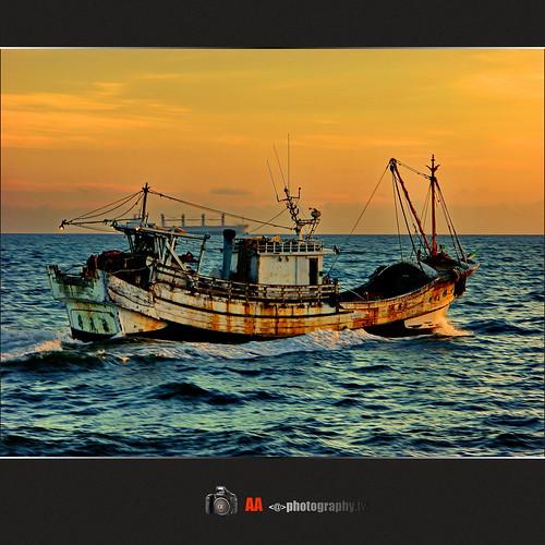 Fisheries XXI