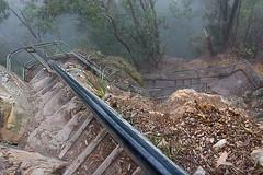 Giant Stairway-9 ([S u m m i t] s c a p e) Tags: landscape bluemountains katoomba giantstairway trackworks