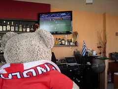 Watching the World Cup (pefkosmad) Tags: holiday ted cute june islands hellas greece plushie pefkos rhodes 2010 angelbar rodhos tedricstudmuffinteddybeartedvacationholidaygreecedodecanesegreek