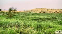 Farm (Instagram x3abr twitter x3abrr) Tags: camera japan canon d farm von picture saudi arabia 50 der kamera من στην wüste salman wir وسط qassim الصحراء صورة التصوير saudiarabien السعودية finden العربية المزرعة المملكة του نجد εικόνα δ μηχανή القصيم الة كنون ιαπωνία τησ السلمان φωτογραφική έρημο يابانية σαουδικήσ αραβίασ alqaseem 50د pictureofthefarm wefindthekingdomofsaudiarabiaalqaseemmiddleofthedesertcameracanon50djapan slikafarmisalmansaudijskearabijeupustinji nalazimoalqaseemcanon50djapanu bildeavgårdensalmanavsaudiarabiaiørkenen finnervialqaseemkameraetcanon50djapan ιχθυοτροφείου βρίσκουν imagendelafincasalmandearabiasauditaeneldesierto nosencontramosconalqasimcámaracanon50djapón imagemdafazendasalman daarábiasaudita nodeserto encontramosalqaseemcâmeracanon50djapão 写真は、ファームサルサウジアラビアの砂漠で、我々はアルqaseemカメラキヤノン50 dが日本を見つける