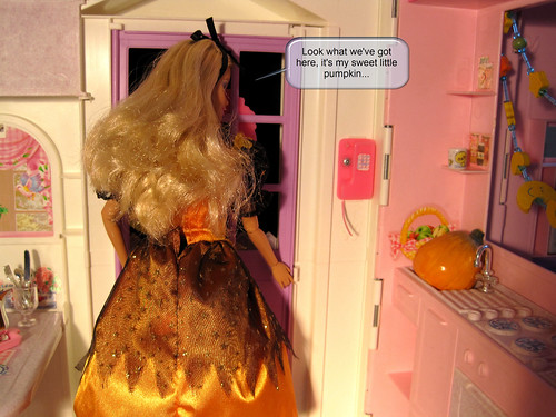 IRENgorgeous: Barbie story - Page 2 4770682711_77348e3ac0