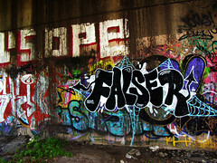 False (monolaps) Tags: graffiti false falser
