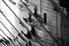 \\\\\\\  that looks like a lomo... (...storrao...) Tags: windows shadow blackandwhite bw reflection portugal nikon floor skaters nb bn porto chão lomofake janelas cdm boavista reflexes skaterboys casadamúsica d90 lookslikealomo storrao sofiatorrão nikond90bw mareevisit actionsamplerlookalike