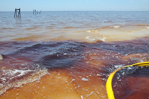 oil in water and oil on beach with boom__7365 web