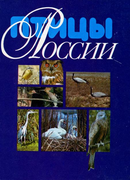 birds_cover