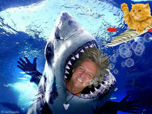 Sharky Paul