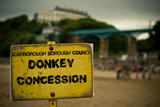 040710_ Donkey Concession