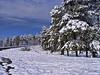 Winter in my place (2) (Néstor Pugliese) Tags: argentina san javier tucumán mywinners
