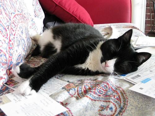 Postcard nap
