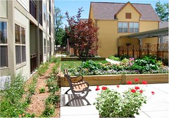 senior housing garden (courtesy of Perry Rose)