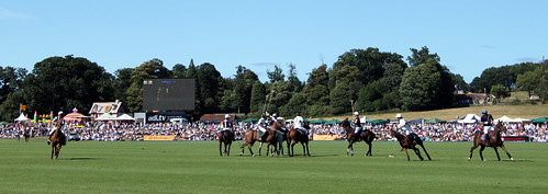 Polo at The Veuve Cliquot Gold Cup