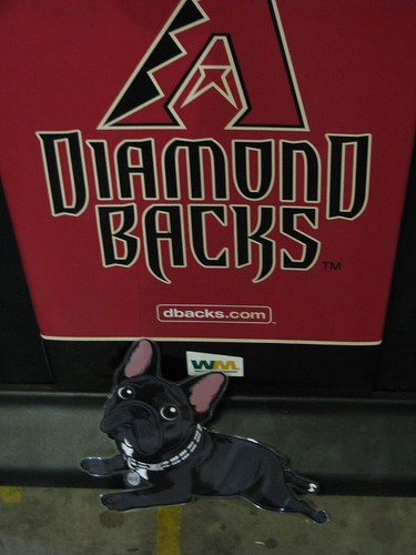 Brutus might be a Dbacks fan for life