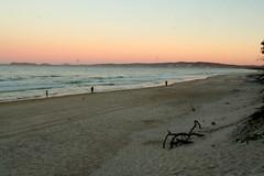 rainbow beach tof tom (33) (g@min) Tags: beach rainbow oaks arcenciel rainbowbeach levdesoleil inskippoint