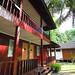Sari Lang Photo 14