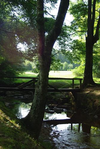 Shiloh Branch