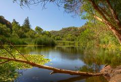 Century Lake