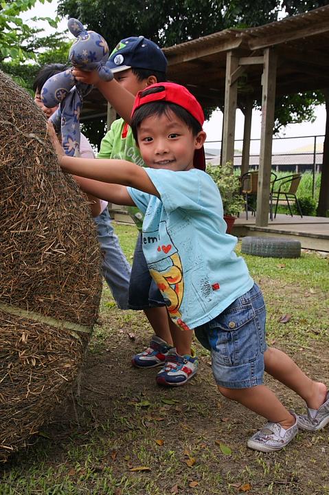 台南柳營八老爺車站(乳牛的家)0016