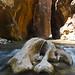 Narrows Rock 2