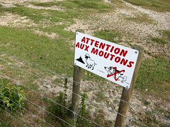 'Attention aux Moutons!' (Adam Kuban) Tags: signs france honeymoon hiking signage normandy montsaintmichel saltmeadows hikeday3 sentiersdefrance