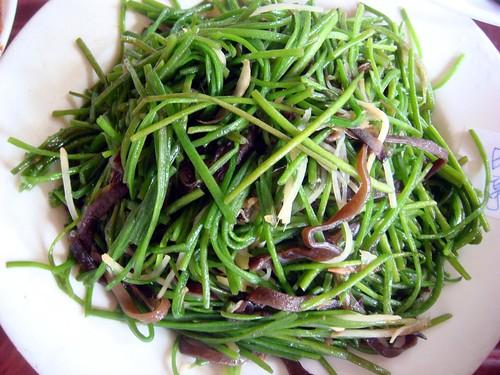 新埔 劉家莊燜雞-山蘇野菜