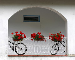 special delivery (jenny downing) Tags: flowers red two france bike bicycle three arch balcony wheels wroughtiron bikes symmetry bicycles shade curve geraniums curved leaning shady redflowers specialdelivery shaded filigree windowboxes infrance interflora bicyclebasket redgeraniums jennypics takeninfrance jennydowning gotredinit soocapartfromacrop gettyimagesfranceq1 photobyjennydowning