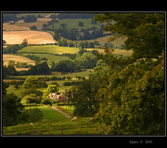 Chocolate Box Picture. (Picture post.) Tags: trees shadow summer sun building green nature landscape sheep farm meadows fields paysage arbre chocolatebox mywinners platinumphoto spiritofphotography