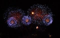 2010年7月31日花火大会 -2-