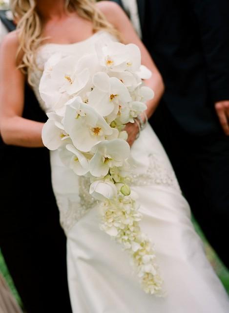 La Fleur Weddings 2