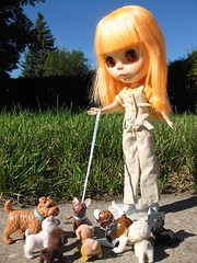 New to the Neighbourhood4 (annesstuff) Tags: dogs toys doll mango blythe neighbours fashiondoll orangehair neighbourhood dollstory annesstuff simplymango