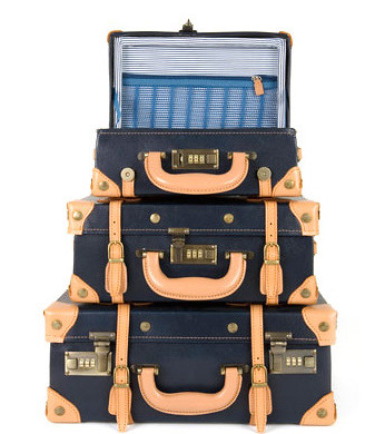 SteamLine Luggage  Designer luggage - inspired by travel & exploration  Tel. +353-1-4295 - Windows Internet Explorer 8132010 90047 AM.bmp