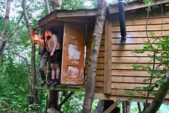 (edna webster) Tags: treehouse herland utdrag fykse trehytte