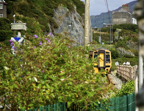 Train Sneaking Up On Barmouth