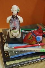 anatomy study book stack