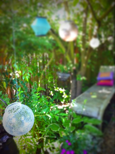 Lights hanging in the garden