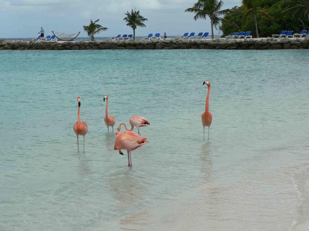 Aruba best country year 2020