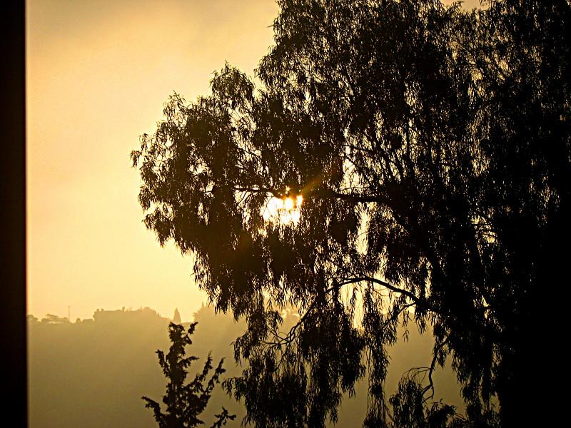 15-08-2010-sunrise-last-day7