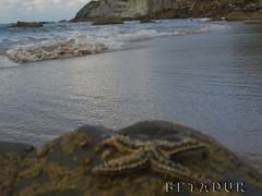 estrella.mar (BetaduR) Tags: costa mar playa olympus arena olas bizkaia estrella euskadi roca barrika e410