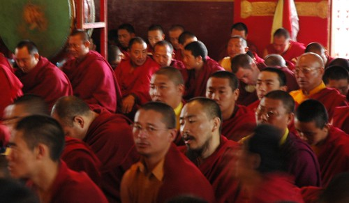 Singing prayers, in a brotherhood of monks, Tharlam Monastery of Tibetan Buddhism, Sakya Lamdre, Boudha, Kathmandu, Nepal