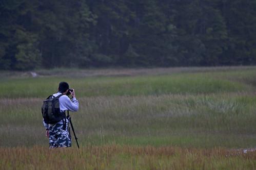 @ Fundy National Park, New Brunswick