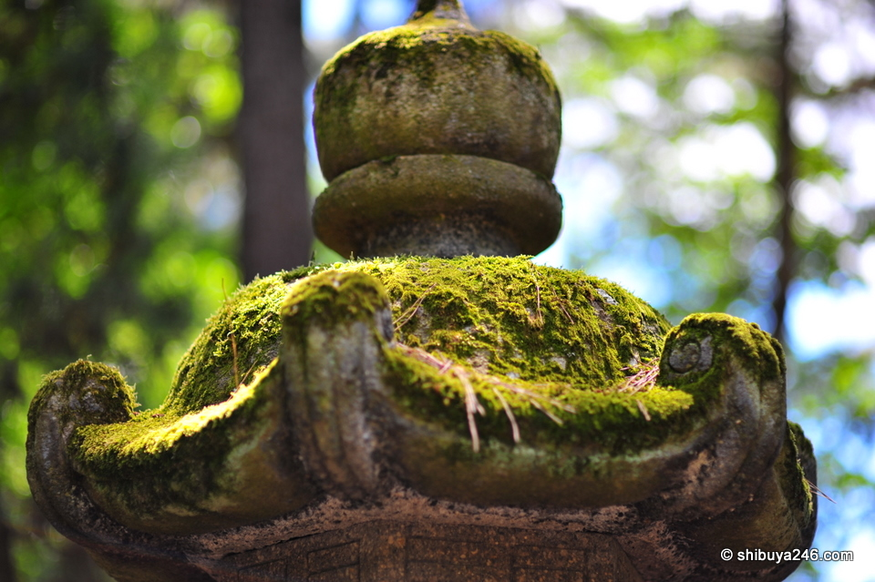 Lanterns covered with moss
