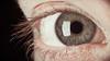 10/52 — See (jæms) Tags: iris selfportrait man macro eye me nikon pupil cornea remoteflash remoteshutter d3s