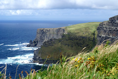 The green of the grass, The blue of the Ocean (little_frank) Tags: ocean blue ireland sea wild sky panorama irish cliff cloud flower green nature beautiful grass rock wall wonder landscape bay coast fantastic scenery europe heaven paradise clare silent view place natural cloudy horizon great dream dramatic surreal peaceful wave eire atlantic special erosion formation fantasy shore foam stunning huge geology wilderness cliffsofmoher fabulous pure heavenly breathtaking impressive moher irlandese vastness irlanda scogliera breathless unspoiled irreal primordial immensity naturesfinest geologic supershot seabord ultimateshot estremit scoglieredimoher newgoldenseal