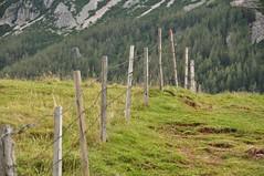 Reede teemaks on aiad (anuwintschalek) Tags: summer mountain berg fence landscape austria path sommer august barbedwire zaun niedersterreich rada 2010 stacheldraht schneeberg aed suvi pfad 18200vr mgi puchbergamschneeberg losenheim nikond90 vanagram okastraat hoyahrtplciruv