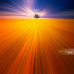 Horizon  ..... to nowhere (Alfonso Domnguez Lavn) Tags: blue light abstract color tree luz yellow azul square landscape movement colorful magic paisaje amarillo vision fantasy fantasia rbol format magical chromatic dreamscape zooming magicas motiion