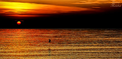 Beauty of sunrise (Yousef Malallah) Tags: sea beautiful beauty sunrise wonderful amazing sony hdr   yousef      a700     malallah