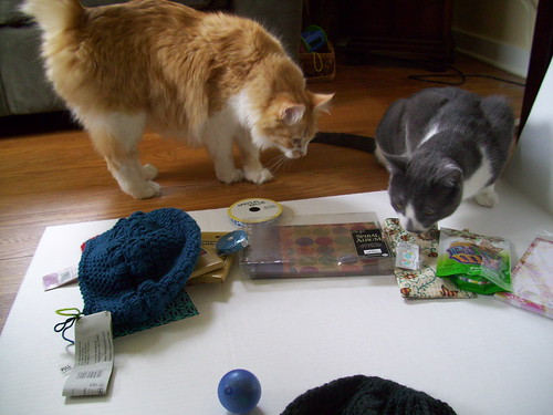 Kitties checking out the swap package