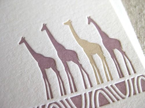 Mary Hines Giraffes_2r