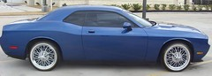 Dodge Challenger (texanwirewheels) Tags: