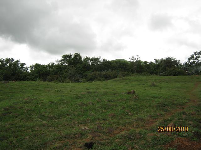Bungalow Plots at Jambhulwadi & Mangadewadi, Katraj PuneIMG_2527